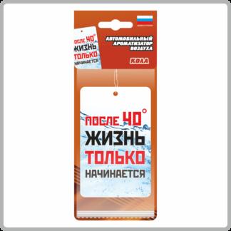 Картонные ароматизаторы (освежители) «Слоганы» — Кола 14